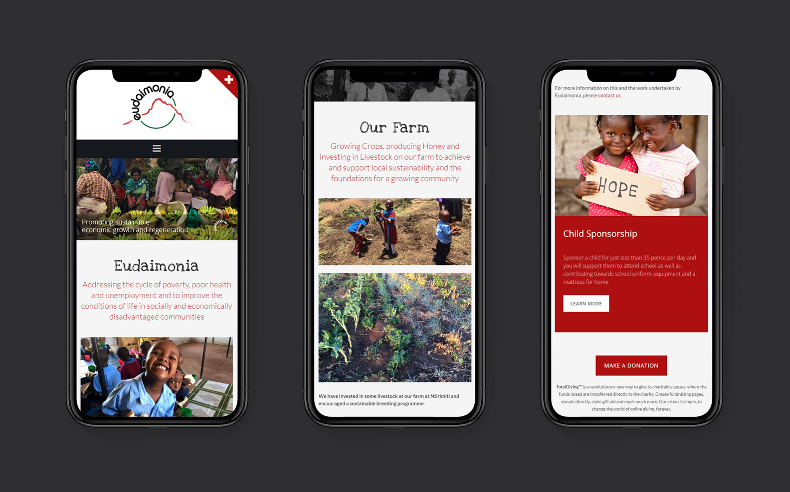 Responsive Website Design - iPhone Screens